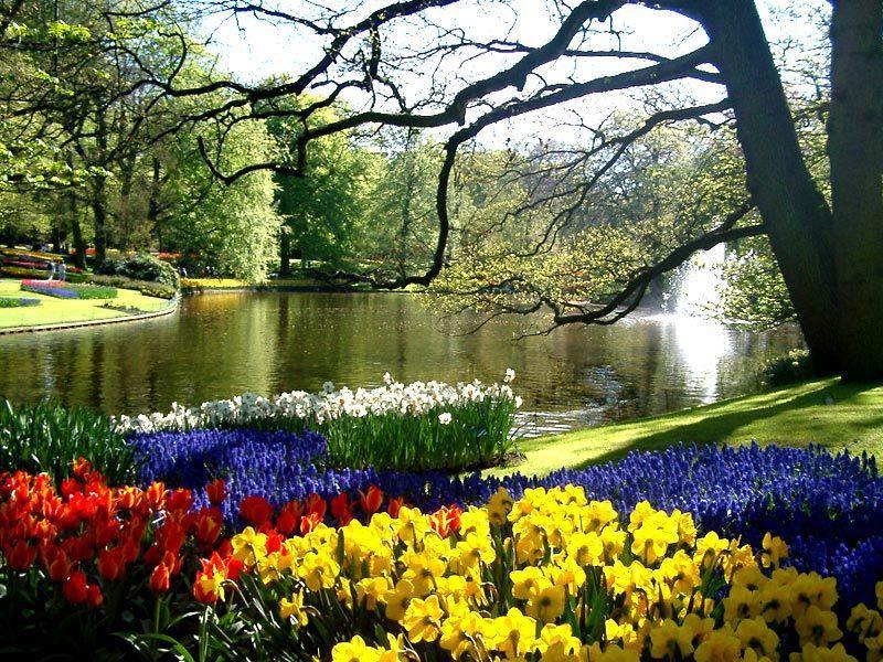 Кёкенхоф или  Сад Европы, Нидерланды