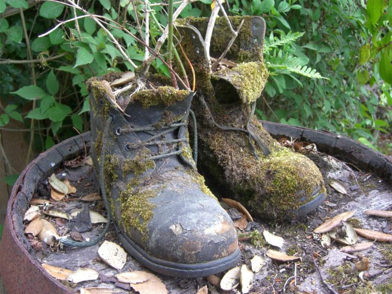 Затерянные сады Хелиган, Великобритания