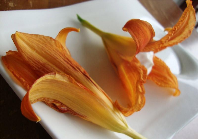 Фаршированные цветы лилейника