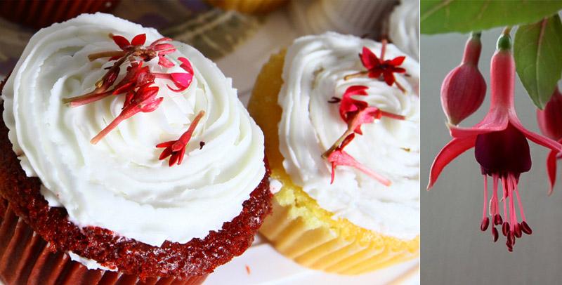 Десерт с фуксией