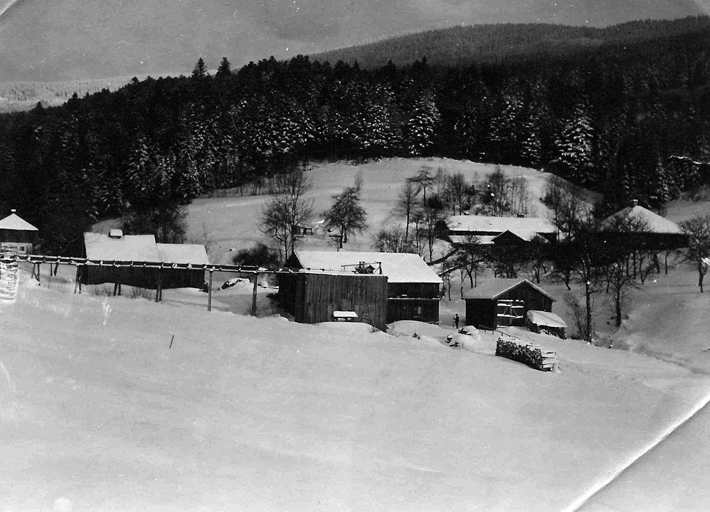 Зима 1929
